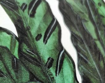 Rattlesnake calathea Leaf Watercolour Giclee Print A4