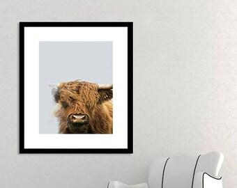 Highland Cow Download Prints, Digital Print, Farmhouse Decor, Shaggy Cow Poster, Home Decor, Australian Gifts, Printable Wall Art Bedroom