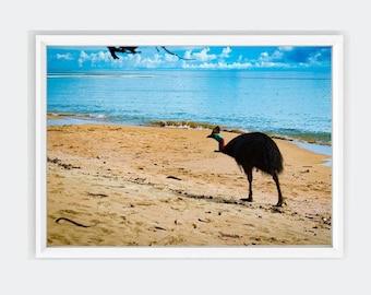 Etty Bay Cassowary Wall Art Print, Queensland Coastal Wall Art, Australia Native Animals, Bird Prints, Downloadable Prints, Beach, Sand