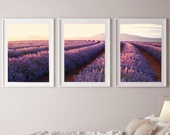Set of 3 Australian Lavender Farm Wall Art Print, Lavender Fields, Nature Printable, Living Room Wall Art, Flower Print, Downloadable Prints