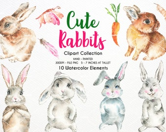Rabbit Baby Watercolor Clipart,Rabbit neutral,Watercolor Rabbit little animal clipart,africa,Rabbit Baby born,Baby shower,Rabbit | WCRB_01
