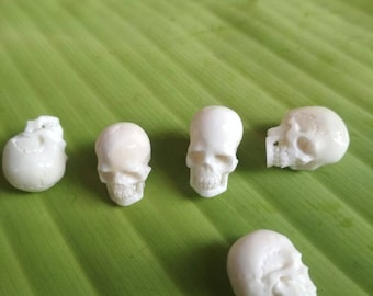 5 Pieces White  skulls small Bone buffalo material handmade carving