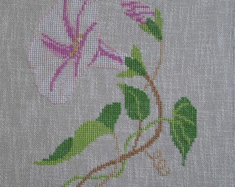 Embroidery convolvulus pink