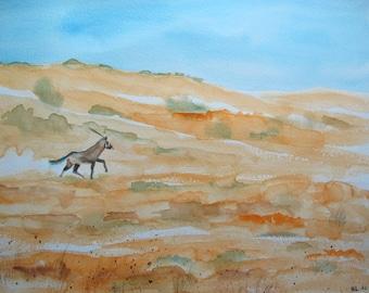 Oryx orange watercolor