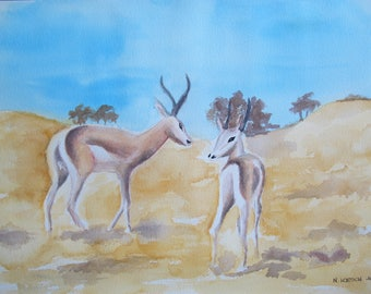 Watercolor on Arches paper Thompson Gazelle