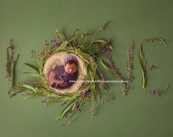 Newborn Digital Backdrop girl flowers LOVE digital Background floral wreath purple green nest photo prop download overlay High Res jpg  #33