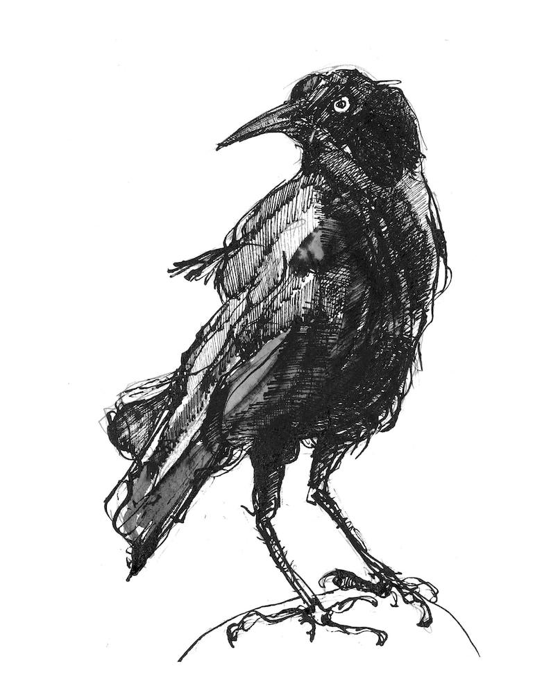 Crow  Giclée print image 0