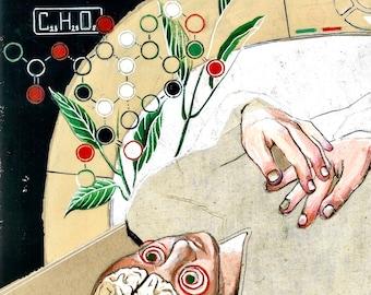 Salvia Divinorium Art Print - Signed and Stamped