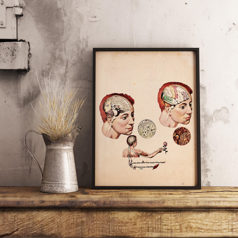 Menschliche Gehirn und Nerven Vintage-Print 1997 Russische | Etsy
