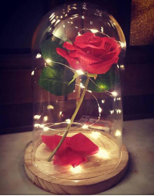 rose enchant e de la belle et la bete sous cloche rose etsy. Black Bedroom Furniture Sets. Home Design Ideas