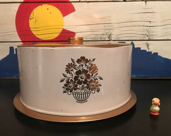 Decoware Cake Carrier