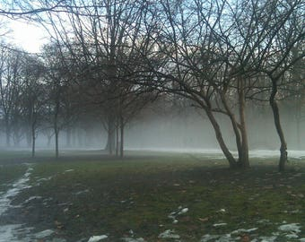 Frick Park