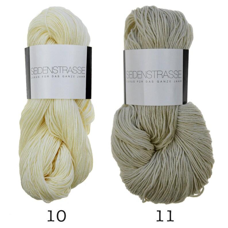 Atelier Zitron  Seidenstrasse  100g/3.53 oz. Fingering New image 0