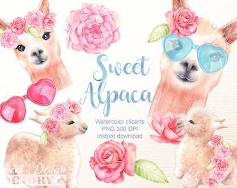 Clipart de lama/ Clipart animaux/ aquarelle clipart/ aquarelle alpaga/ bébé animal clipart / clipart floral/ clipart lunettes