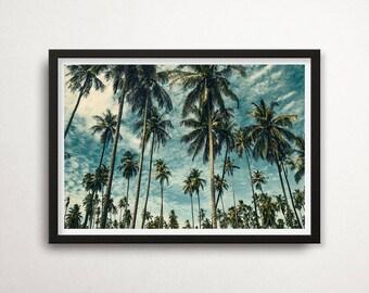 Palm Trees Poster, Palm Tree Photography Print, Tropic Wall Art, Palms Print, Palm Trees Photo, Tropical Decor, Palms, Palm Tree Poster