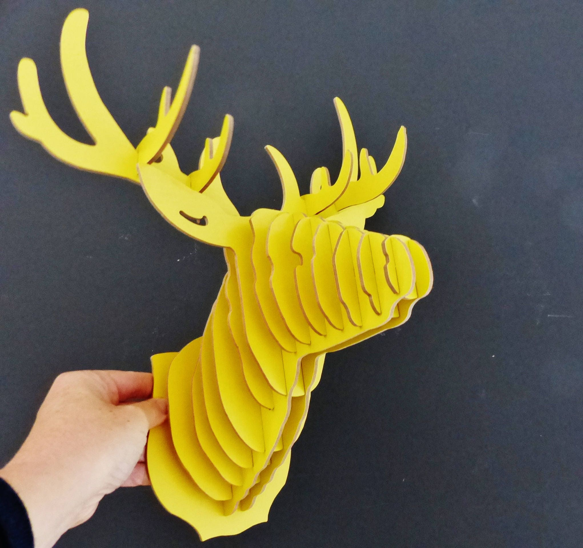 Deer trophy Kit to assemble your own yellow deer head