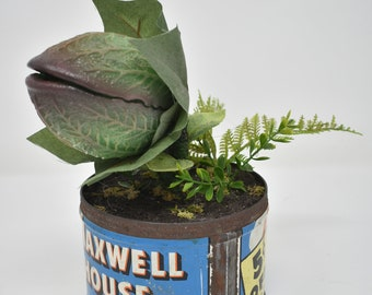 """Baby Audrey II Replica Prop Display from """"Little Shop Of Horrors"""""""