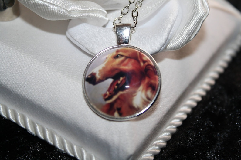 chain silver Greyhound sock stocking