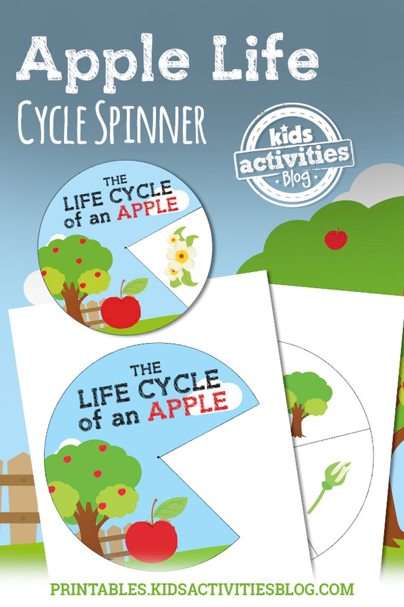 picture regarding Apple Life Cycle Printable named Apple Lifetime Cycle Spinner Printable Science Match for Young children