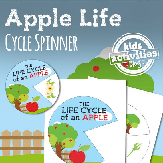 photograph regarding Apple Life Cycle Printable named Apple Lifestyle Cycle Spinner Printable Science Game for Children
