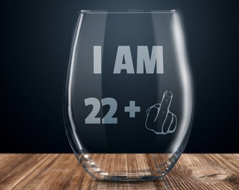 23rd Birthday Gift Wine Glass Party Funny 23 Year Old Twenty Three Years Gag Gifts Ideas