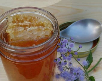 Honeycomb ~ Raw Organic Comb Honey ~ Eco Gift ~ All Natural  Raw Honeycomb  ~ Nature's Candy ~ Mississippi Made Honey ~ Eco Gift