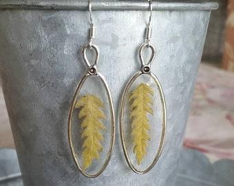 Real fern earrings - fern jewelry - botanical jewelry - woodland earrings - nature gifts - ferns - boho style