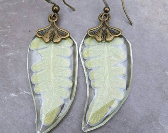Real fern earrings - fern earrings - Resin jewelry - botanical jewelry - dried flower earrings