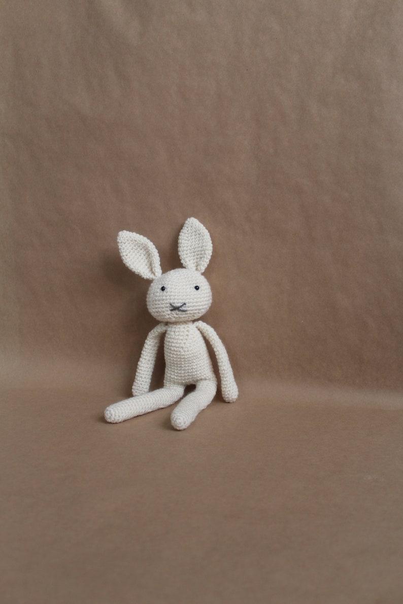 Amazon.com: Amigurumi Bunny Rabbit (Purple), Stuffed Plush Rabbit ... | 1191x794