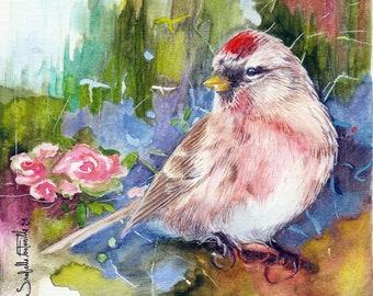 Painting Watercolor Bird 12 x 12 cm