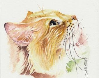 Painting Watercolor Cat Roux 16 x 16 cm