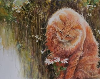 Watercolor cat red 20.5 X 31 cm