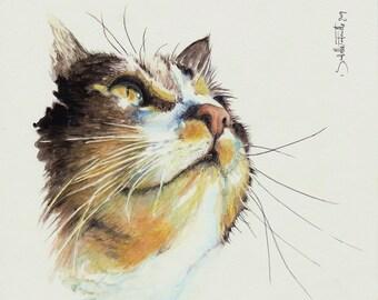 Painting Watercolor Gouttière Cat 20 x 20 cm