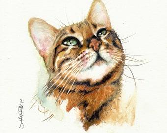 Painting Watercolor Bengal Cat 20 x 20 cm