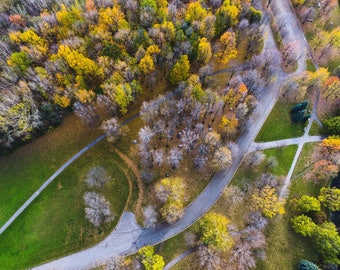 Framed prints (Park Drone view)