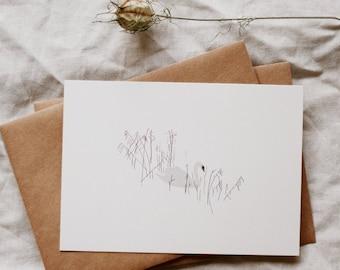 Swan Pond Postcard