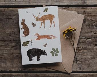 Postcard Forest Animals, Wildlife, Forest