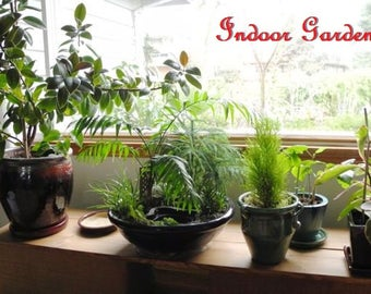 See How To Make Indoor Gardening For All Plants PDF eBook
