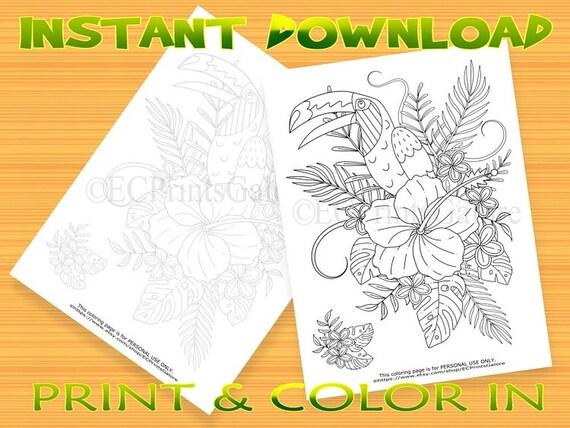 Aves tropicales y flores ilustración Instantánea descargar | Etsy