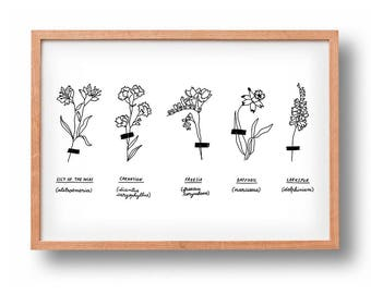 Herbarium   Floral Art   Poster   Wall Decor   Gallery Wall   Wall art