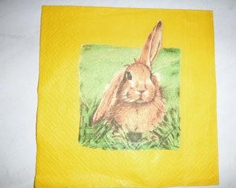 "Nice pattern ""Rabbit 2"" paper TOWEL"