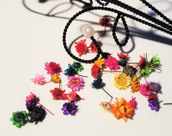 5 color dried flowers