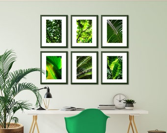 Palm Leaf Print, Leaf Art Set, Set of 6 Botanical Print, Botanical Print Set, Palm Print Art, Nature Art Set, Green Print Set, Tropical Leaf