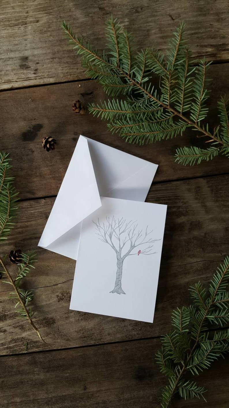 Hand Illustrated Christmas Cardinal Greeting Cards