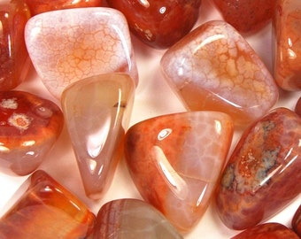 Fire AGATE Tumbled Stone 1 or Set of 6 Pieces Wholesale Natural Tumble Stones Medium .75 to 1.25 Inches Crystal Bulk Discount Mexico Mexican