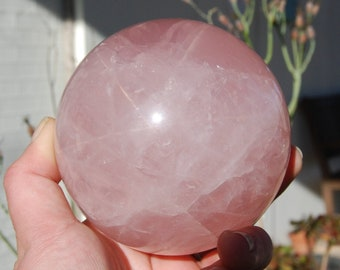 "RARE Large Sized STAR Rose Quartz Sphere 1162g 95mm (3.75"") Ball Polished Healing Crystals Universal Love Pink XL Extra Large"