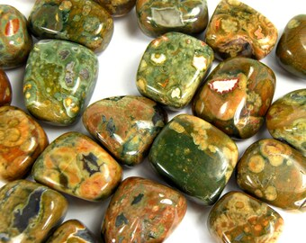"RHYOLITE RAINFOREST JASPER Tumbled Stone 1 or 6 Pieces Wholesale Natural Tumble Stones Medium .75-1.25"" Crystal Self Esteem Bulk Discount"