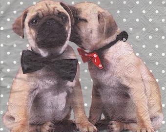 DOGS LOVE 057