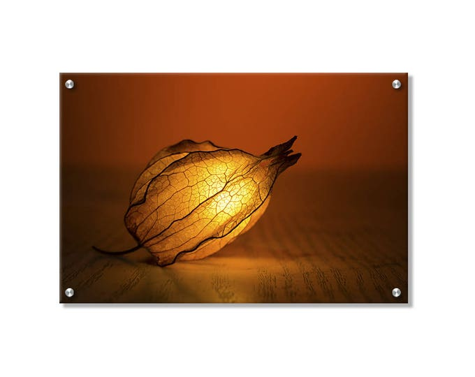 Peruvian Ground Cherry Fruit Metal Wall Art Decor