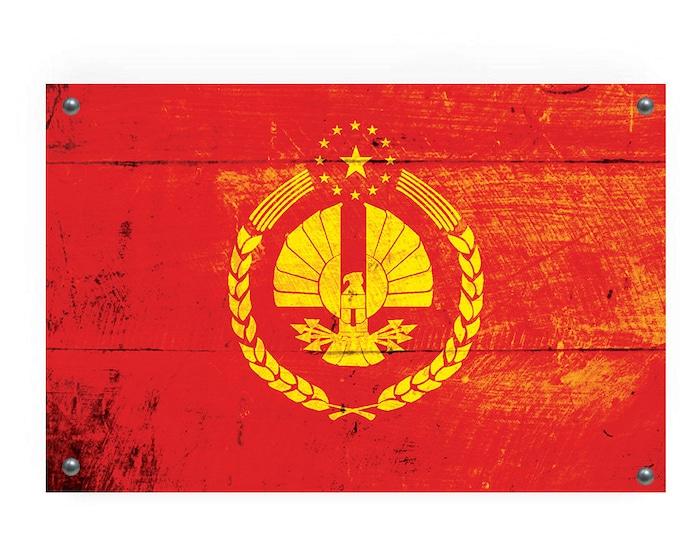 The Capitol of Panem (Hunger Games) Flag Graffiti Wall Art